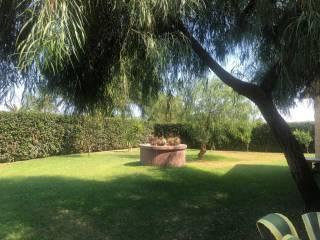 Foto - Villa bifamiliare, buono stato, 290 mq, Crosia