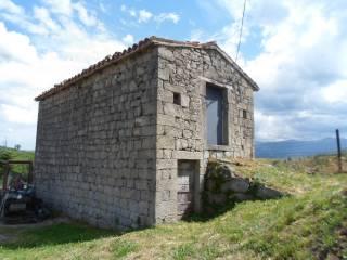 Foto - Rustico Località Scalelle, Roccafluvione