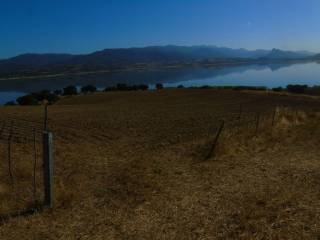 Foto - Terreno a Oschiri