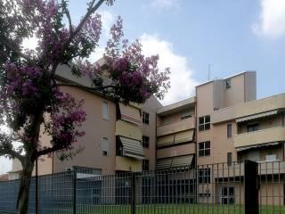 Foto - Trilocale piazza San Damiano, Cogliate