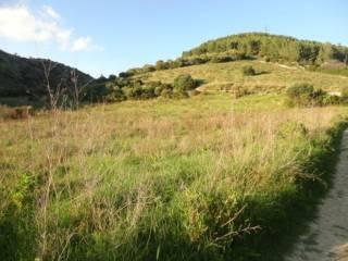 Foto - Terreno agricolo in Vendita a Osilo