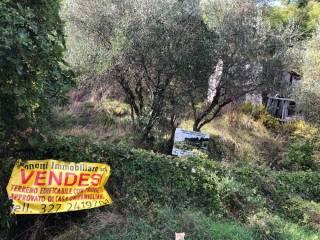 Foto - Villa unifamiliare via Lozzana, Vezzano Ligure