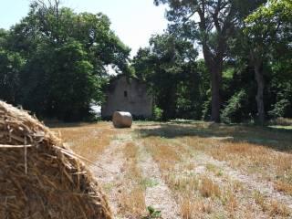 Photo - Farmhouse via Prato Bini, Palestrina