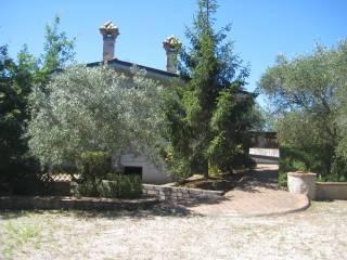 Foto - Villa unifamiliare, nuova, 135 mq, Campo di Carne - Pantanelle, Aprilia