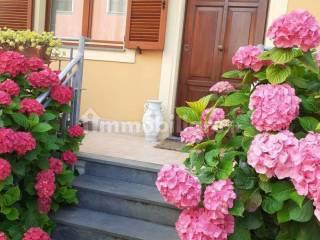Foto - Villa bifamiliare via di Mezzo 309A, Piano di Conca, Massarosa
