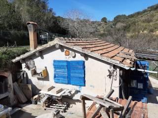 Foto - Rustico Località Cannatelli, Monte Argentario