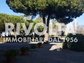 Foto - Bilocale Località Chiarone Scalo, Capalbio