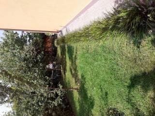 Photo - Terraced house vicolo Madre Teresa di..., Ripalta Arpina