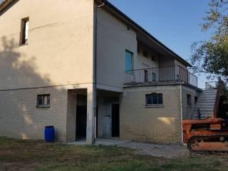 Foto - Casa colonica Strada Provinciale Madonna del Buon Cuore, Torre San Patrizio