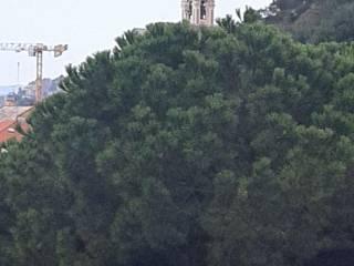 Foto - Attico via Alessandria 48, Albisola Superiore