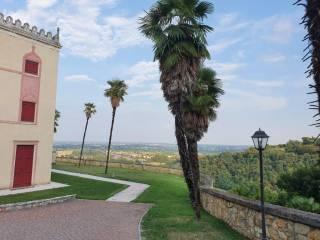 Foto - Appartamento ottimo stato, piano terra, Monte Berico, Vicenza