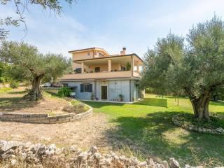Photo - Single family villa via di colle mannarino 5, Sant'Angelo Romano