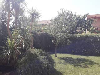 Foto - Villa plurifamiliare Circonvallazione Berlinguer, Capalbio