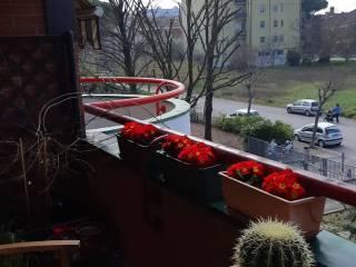 Foto - Appartamento via Jano Planco, Via Covignano - Villaggio Azzurro, Rimini