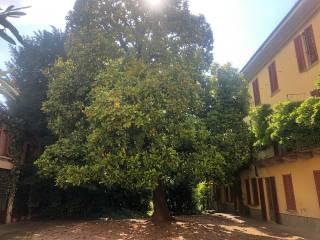 Foto - Casale via Giuseppe Garibaldi 5, Appiano Gentile