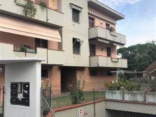 Foto - Appartamento via Trieste, Meldola