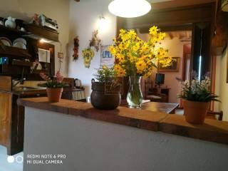 Foto - Bilocale piano terra, Guardistallo