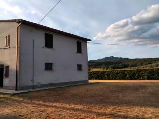 Foto - Casale Strada Provinciale Macchiascandona, Tirli, Vetulonia, Buriano, Castiglione della Pescaia