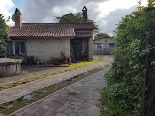 Foto - Villa unifamiliare Strada Provinciale Settevene Palo Prima, Trevignano Romano