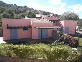 Foto - Villa bifamiliare via La Pace, Diano Marina