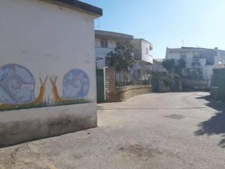 Foto - Terratetto unifamiliare stradone sant'anastasio 1, Spadellata - Cinque Miglia, Anzio