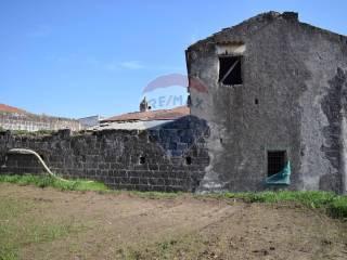 Foto - Rustico via Monte Massico 19, Falciano del Massico