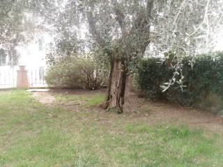 Foto - Villa unifamiliare, buono stato, 223 mq, Poggetto, Poggio a Caiano