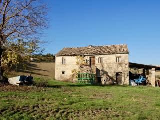 Foto - Casale, da ristrutturare, 260 mq, Monte San Giusto
