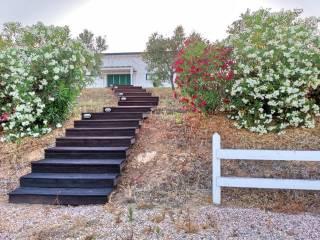 Foto - Villa unifamiliare Località Imposto Vaccareccia 10, Pescia Romana, Montalto di Castro