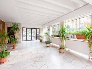 Photo - 4-room flat via Gabrio Casati 103, Nuovo Salario, Roma