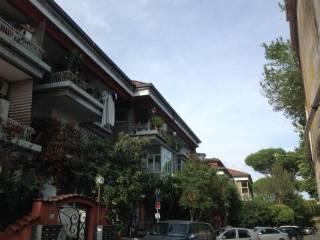Case in affitto in zona Tomba di Nerone, Roma - Immobiliare.it