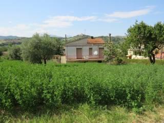 Foto - Cascina via SS 150, Petrignano, Tossicia