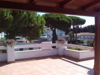 Photo - Penthouse via Circeo, 21, Santa Teresa, Anzio