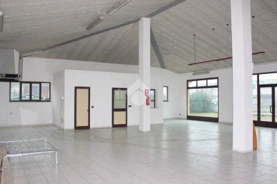 foto Appartamento Affitto Rodigo