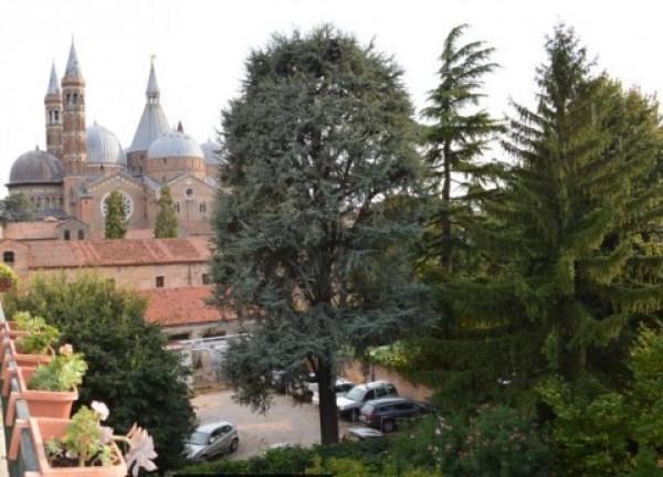 foto  Appartamento buono stato, ultimo piano, Padova