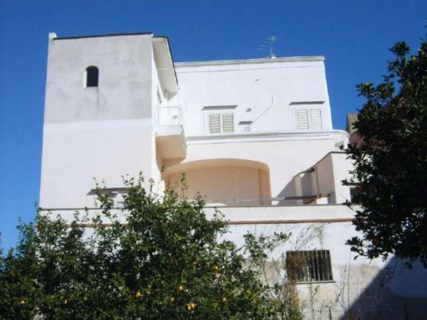 Vendita appartamento procida bilocale in via vittorio - Immobiliare procida ...