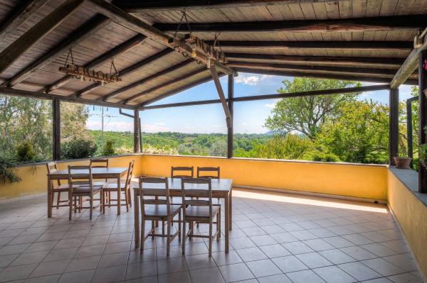foto veranda Agriturismo in Vendita a Bracciano