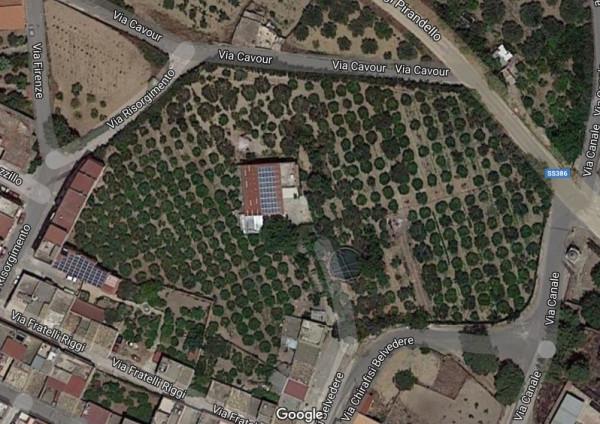 foto  Azienda agricola in Vendita a Calamonaci