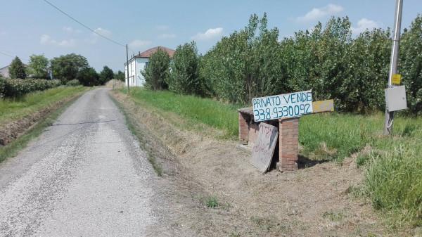 foto  Casa indipendente via Gresolo 19, Argenta