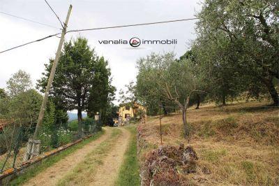 foto Casa indipendente Vendita Castel San Niccolò