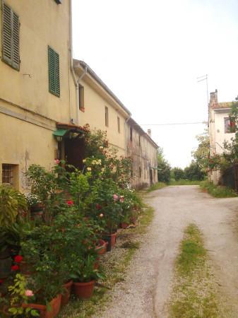 foto vista d'insieme Palazzo / Stabile piazza dei Miracoli, Pisa
