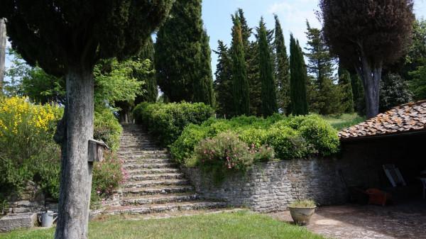foto giardino Rustico / Casale, ottimo stato, 384 mq, Arezzo