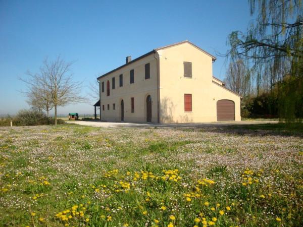 foto esterno Rustico / Casale via Aguta 53, Bagnacavallo