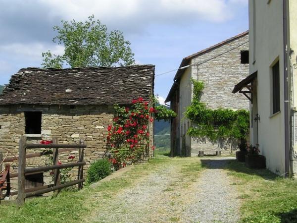 foto  Rustico / Casale Località Chiesa frazione San Pietro, Borgo Val di Taro