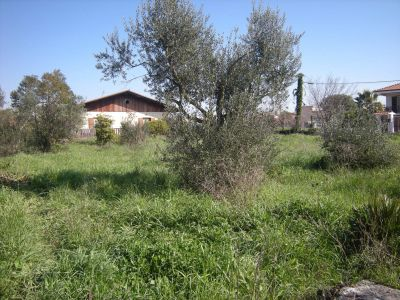 Country Houses For Sale Formia
