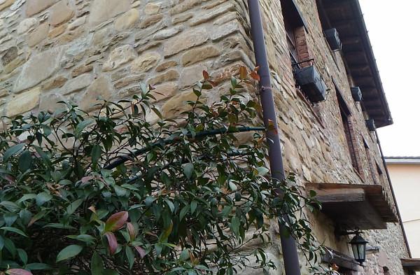 foto esterno Rustico / Casale Ca' Provini, Gropparello