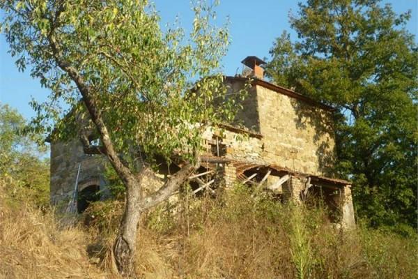 foto  Rustico / Casale, da ristrutturare, 156 mq, Lisciano Niccone