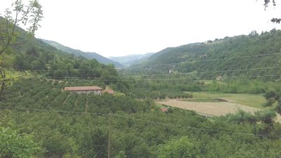 foto Rustico / Casale Vendita Pezzolo Valle Uzzone