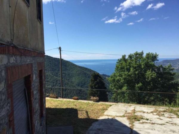 foto  Rustico / Casale salita San Domenico 23, Rapallo
