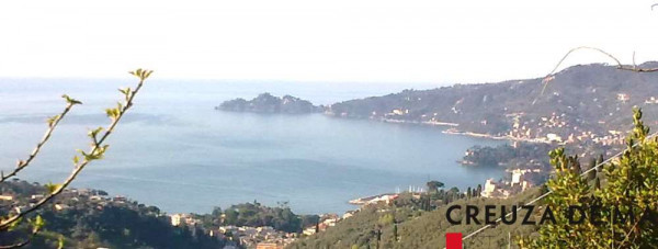 foto  Rustico / Casale, nuovo, 140 mq, Rapallo